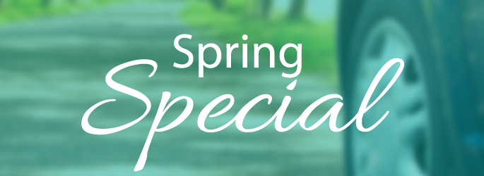 5 Reasons to Take Advantage of the Spring Special